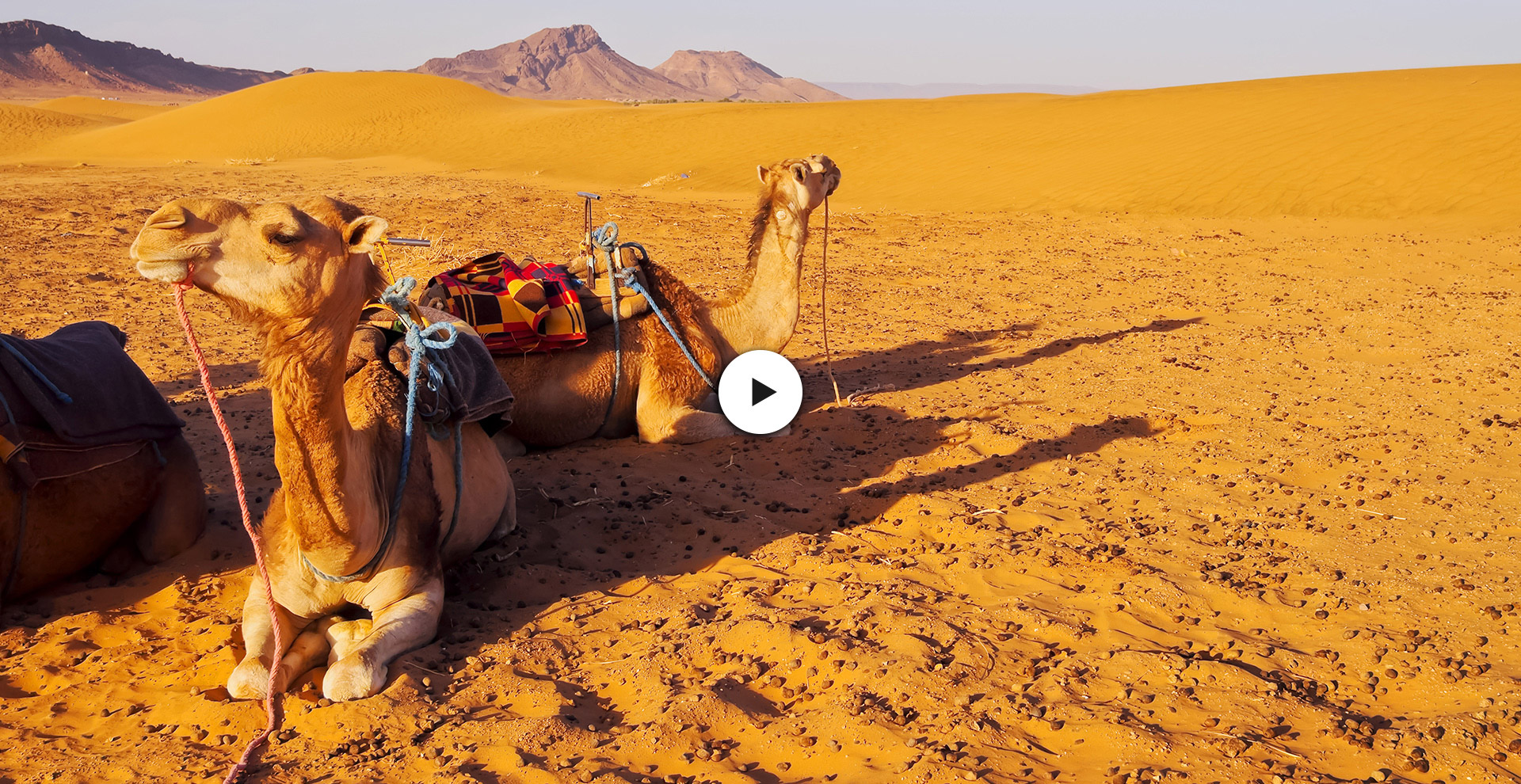 IMG-TLogitravel-Video-2-Marruecos